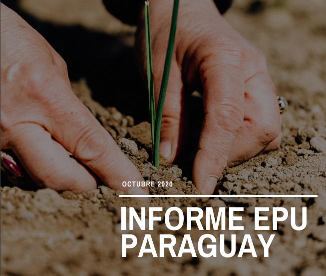 epu_paraguay_2020.png