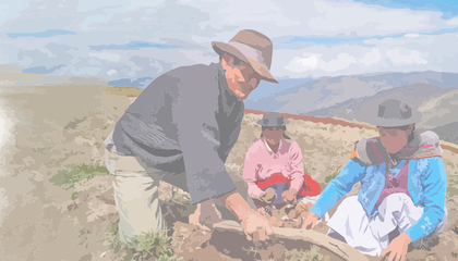 Informe AF Perú.png