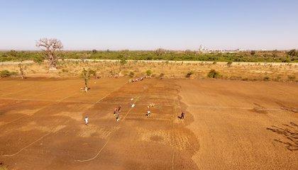 Landscape Senegal/IsraelBionyi/ILCAfrica