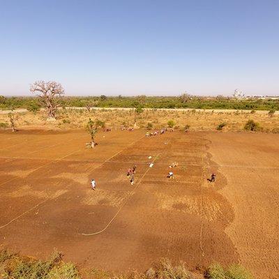 ILC Africa_Senegal