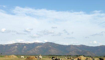 Fallow land-Nepal.jpg
