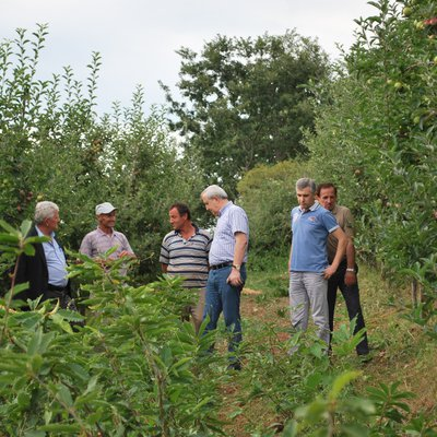 Florin Torba tours Albanian forests_ National Federation of Communal Forests and Pastures of Albania