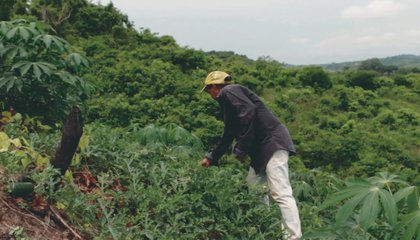 campesinocolombia.jpg