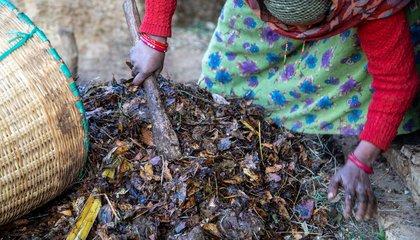 Haliya-11_Bhabishya Paudel.jpg