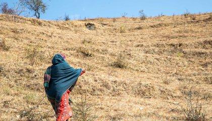 Haliya-43_Bhabishya Paudel.jpg