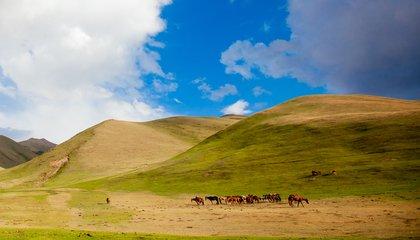 56 - Kyrgyz jailoo