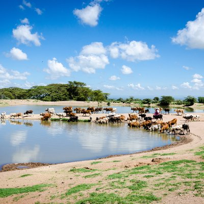 Michael Benanav_MajiMoto-Maasai-HiRes-35.jpg