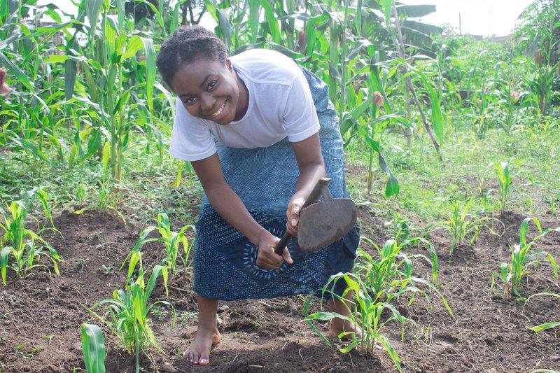Nigeria farming.jpg