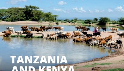 Rangelands in Kenya and Tanzania