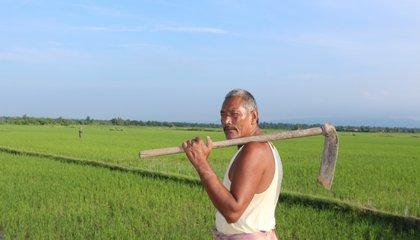 Tenant Farmer.JPG