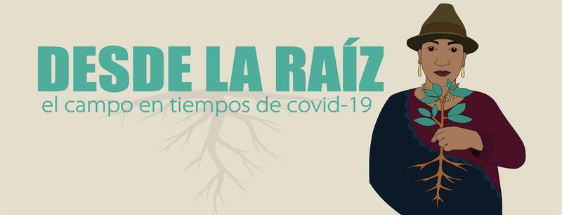 DESDELARAIZ_IEE_2020.png