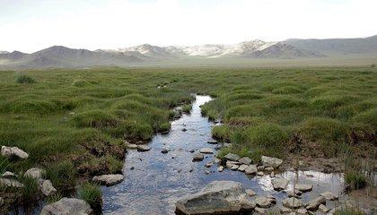 mongolia jason taylor 21.jpg