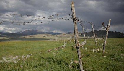 mongolia jason taylor 29.jpg