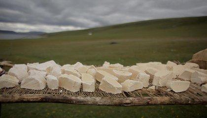 mongolia jason taylor 56.jpg