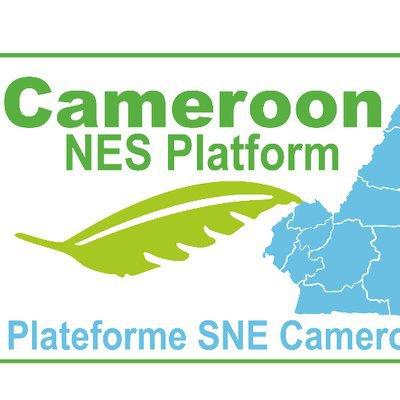 NES CAMEROON_jpg