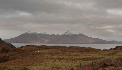 scotland jason taylor 20.jpg