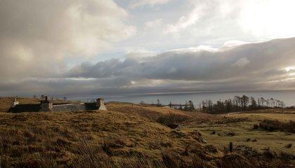 scotland jason taylor 4.jpg