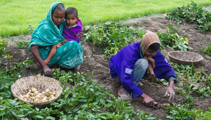 women farmers bangladesh