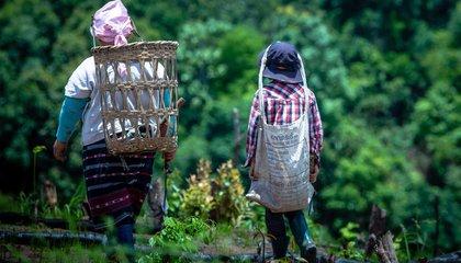 thailand_women farmers_AIPP.jpg