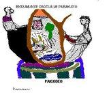 PAICODEO