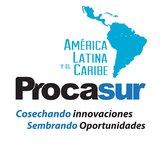 Procasur