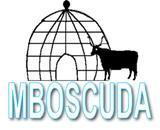 MBOSCUDA