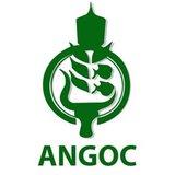 Angoc Logo