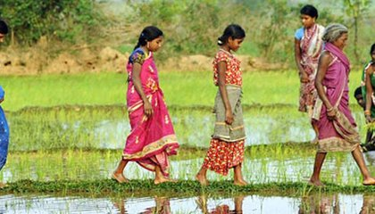 trocaire_-_odisha-women_caption_tribal_women_in_odisha._photographer_justin_kernoghan.jpg