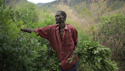 uganda jason taylor 28.jpg